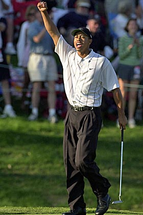 Tiger was super stoked after draining a famed birdie putt on Sawgrass 17 in 2001. (Getty Images)