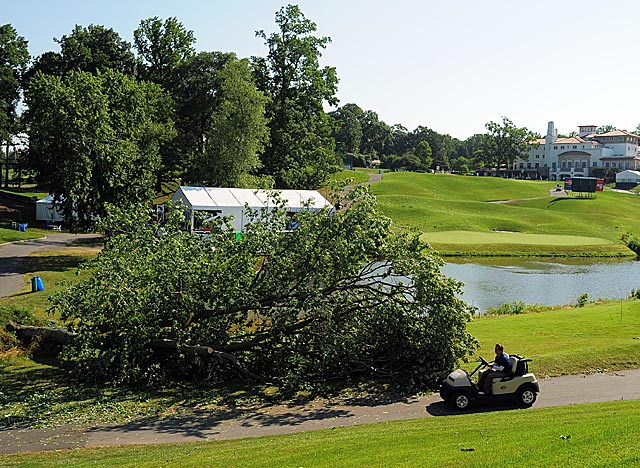 A downed tree near the sixth green was one of dozens uprooted at Congressional before Saturday's round. (AP)