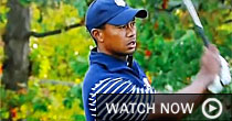 Tiger Woods (screen shot)