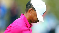Tiger scuffles in return