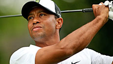 Tiger in contention